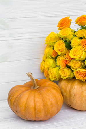 bouquet of yellow roses and pumpkins on white wooden board. Beautiful yellow roses. Autumn decor 版權商用圖片