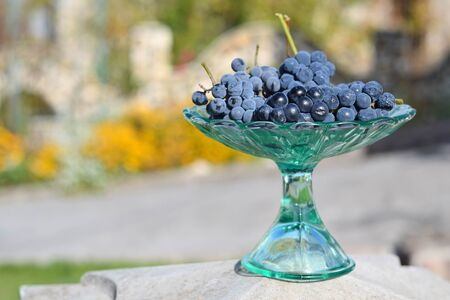 glass vase: frosted grapes in a glass vase Stock Photo
