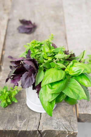 varieties: Basil - spices, different varieties on a wooden background