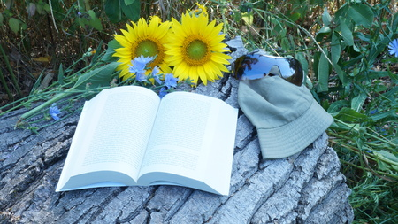 big flower: Big flower of sunflower lies with Panama and sunglasses Book reading.