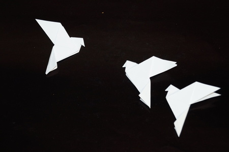 Origami pigeons on a black background. A white dove in flight is isolated on a black background. A paper dove is isolated on a black background.