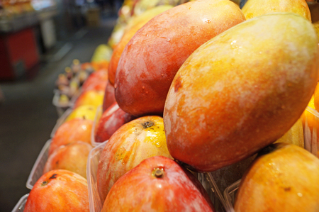 Boqueria Market. Ripe juicy mangoes are laid out in rows on the shelves of a supermarket. Fruit in containers. Stock Photo
