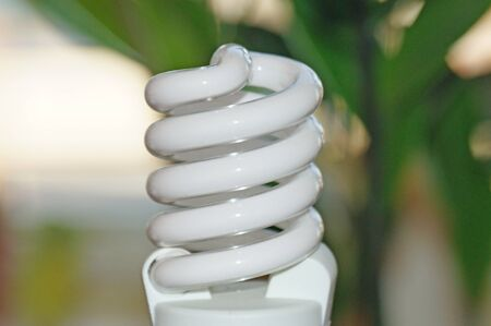 Energy saving light bulb on a background of green plant leaves. Stock Photo