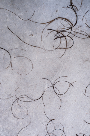 cut off: group hair cut off on grey concrete background at the hairdresser salon floor for use as texture or background.