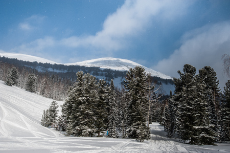 schneeberg: beautiful winter landscape in the forest.