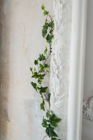 low relief: White art stucco gypsum wall with a grean loach branch on it Stock Photo