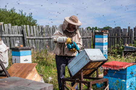 Beekeeper uses air-blowing device to brush bees aside. Bees swarm in collection container. Beekeeper handles receptacle with queen bee