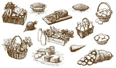 Produits de la ferme - Ensemble d'illustrations dessinées à la main (vecteur) Vecteurs