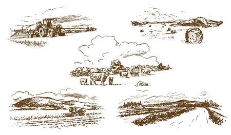 Agricultural Countryside Landscape Set of Hand-Drawn Illustrations (Vector)