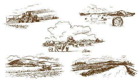 Paesaggio di campagna agricola insieme di illustrazioni disegnate a mano (vettoriale)