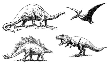 dinosaurs - Brontosaurus, Pterodactylus, Stegosaurus and Tyrannosaurus - set of illustrations, black and white hand drawing on a white background, vector