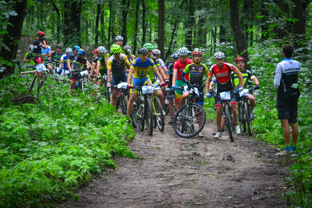 Group of MTB cyclists on start line competing in the forest near Lviv in Ukraine.