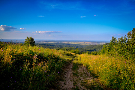 dirt: Landscape panorama from hill and a dirt road leading to the forest below