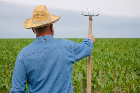 Senior farmer looking forward in the corn field holding pitchfork in his right hand