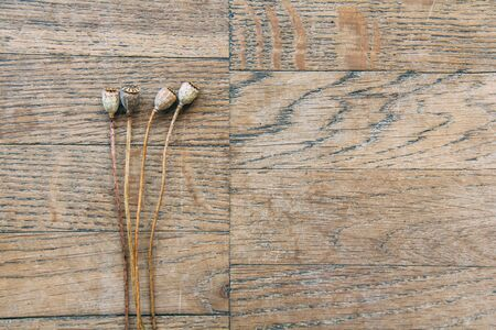 Bouquet of dried poppy heads on brown background of vintage wooden planks, top view horizontal