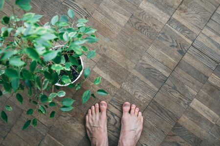 Top view of barefoot man standing on wooden floor with flower pot next to him