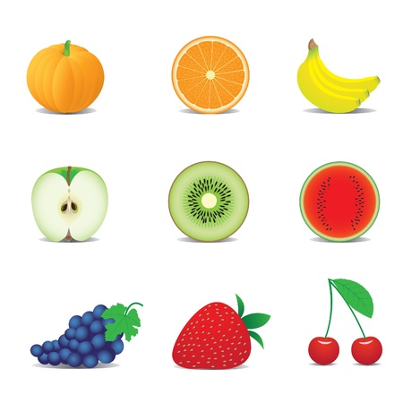 orange peel: icons of fruits