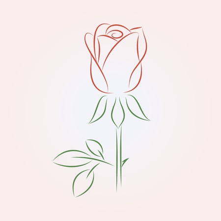 flower line: illustration of a rose