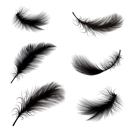 pajaros volando: ilustraci�n vectorial de la pluma