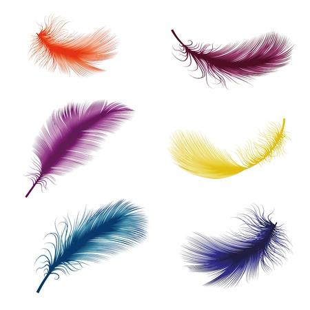 illustration vectorielle de plume Vecteurs