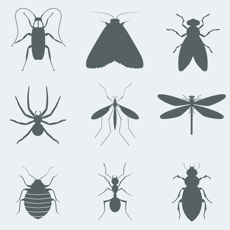 disgust: Vector illustration silhouettes of insects Illustration