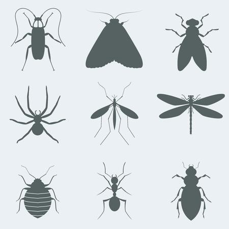 Vektor-Illustration Silhouetten von Insekten