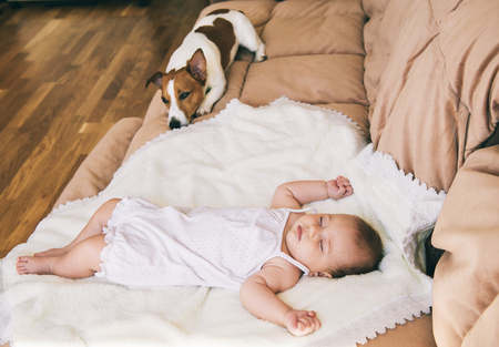 3 month: Jack russel terrier dog and cute 3 month baby sleeping together on the bed.