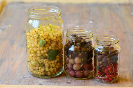 currants: Gooseberries and currants