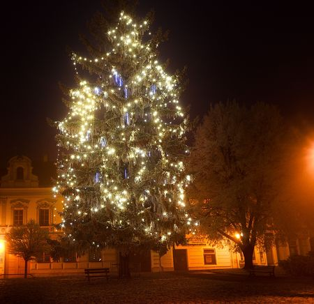 stock photo the christmas tree outdoors lights in a winter town foggy and snowy weather