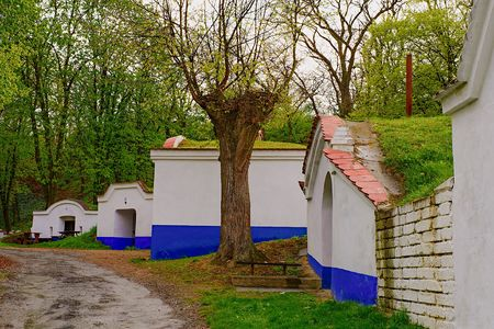 Traditional Wine Cellars - Plze, Petrov, Czech Republic, Europe. Wine lore and folklore. Moravian wine cellars.
