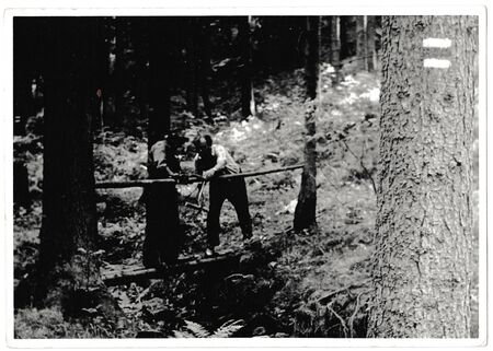 build in: THE CZECHOSLOVAK SOCIALIST REPUBLIC - MAY 30, 1981: Retro photo shows volunteers build footbridge in the forest. Black & white vintage photography Editorial