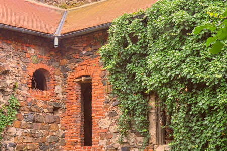 Ruins of medieval convent. Convent Rosa Coeli at Dolni Kounice, Czechia