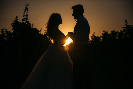 tenderly: Silhouettes bride groom standing on the vineyard and tenderly looking at each other at sunset. Concept of love and family