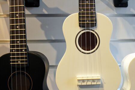 black, white guitar ukulele in the store on the background of the wall