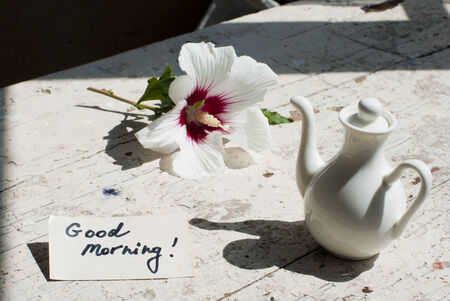 Pictures of sunny summer morning with beautiful flower, delicious turkish coffee on a rusted old table with decorations. photo