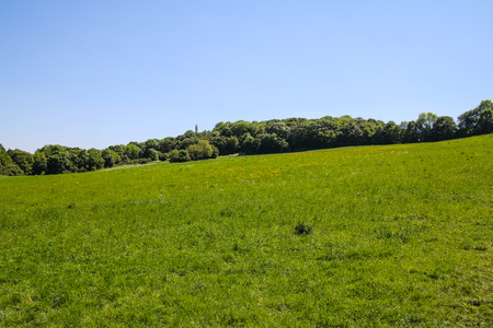 and hiking path: Roterberg - Red Hill, Vienna, Austria Stock Photo