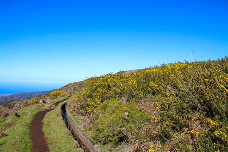 Plateau Paul da Serra on the island of Madeira, Portugal Stock Photo