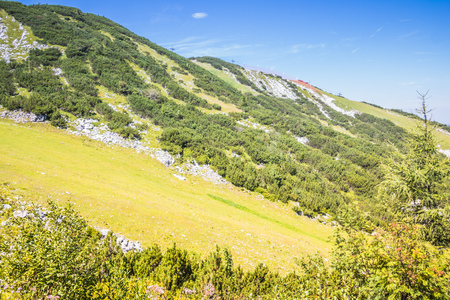 The Hochkar Mountain in G?stlinger Alps in summer, Mostviertel, Lower Austria, Austria 版權商用圖片