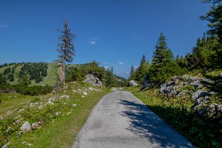 The Hochkar Mountain in G?stlinger Alps in summer, Mostviertel, Lower Austria, Austria Imagens