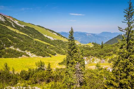 The Hochkar Mountain in G?stlinger Alps in summer, Mostviertel, Lower Austria, Austria Imagens - 126632308