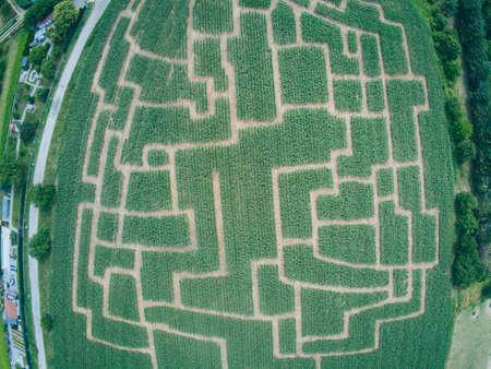 Event maze in the cornfield at Brno-Komin from above, Czech Republic