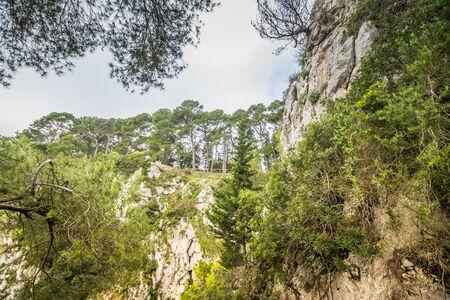 Parco Astarita on the island Capri, Italy Standard-Bild - 146874513