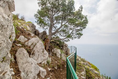 Parco Astarita on the island Capri, Italy Standard-Bild - 146874553