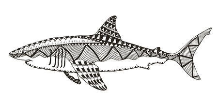 Shark zentangle stylized, vector, illustration, pattern, freehand pencil, hand drawn. Zen art. Print for t-shirts and coloring books. Illustration