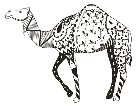 Camel zentangle stylized, vector, illustration, freehand pencil. Pattern. Zen art. Print for coloring books and t-shirts.