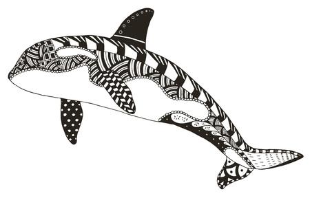 Zentangle de la orca estilizado, vector, ilustración, lápiz a mano alzada, dibujado a mano, modelo, orca. Patrón. Arte Zen. Imprimir para colorear libros y camisetas. Ilustración de vector