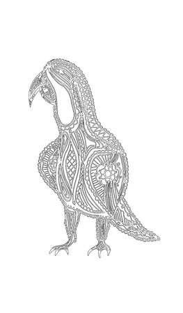 Artistically drawn, stylized parrot vector, illustration, freehand pencil, lace pattern. Print for coloring books.