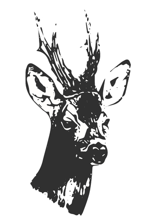 Hand drawn black and white buck silhouette, vector, illustration. Print for t-shirts.