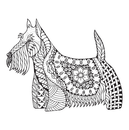 Schottischer Terrierhund zentangle stilisierte, Vektor, Illustration, freihändiger Bleistift, die gezeichnete Hand, Muster. Zen Kunst. Schwarz-Weiß-Illustration auf weißem Hintergrund. Drucken Sie für T-Shirts und Malbücher.