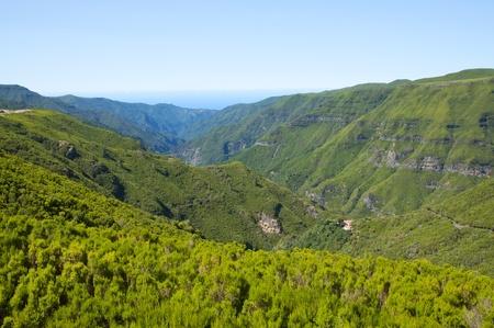 Mountains on Madeira island photo